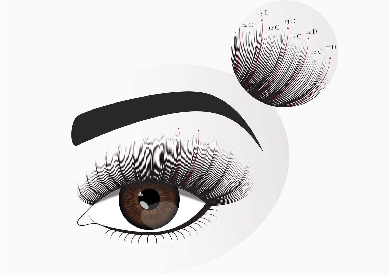 Kim kardashian eyelash extensions explained in illustration.
